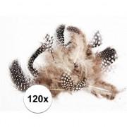 Merkloos 120x Zwart en witte decoratie veren