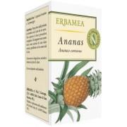 ERBAMEA Srl Ananas 50 Opercoli