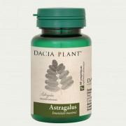 Astragalus comprimate Dacia Plant