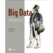 Big Data: Principles and Best Practices of Scalable Realtime Data Systems, Paperback/Nathan Marz