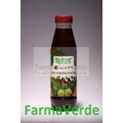 Sirop Armonia Fructelor 500 ml Plafar