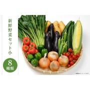 新鮮野菜セット小(8種類)