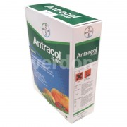 Fungicid Antracol 70 WP 1kg