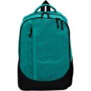 Fastrack A0634NGR01 23 L Laptop Backpack(Green, Black)