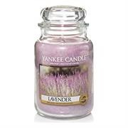 Yankee Candle Lavender Large Jar Retail Box No
