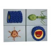Wirus 4 modele