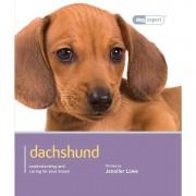 Dog Expert Dachshund Dog Expert Book