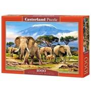 Puzzle Dimineata pe Kilimanjaro, 1000 piese