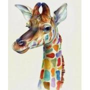 Gaira Malování podle čísel Žirafa M991113