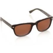 Superdry Wayfarer Sunglasses(Brown)