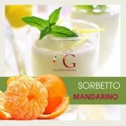 Officine Gastronomiche Sorbetto Mandarino 20 buste da 1 kg
