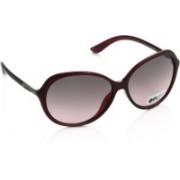 Opium Oval Sunglasses(Pink, Grey)