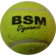 Cricket / Tennis Ball