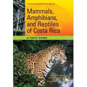 Mammals, Amphibians, and Reptiles of Costa Rica: A Field Guide, Paperback