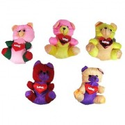 Pack of 5 Cute Heart Love with Teddy Bear Soft Stuffed Plush Toy Kid Children Infant love Valentine Birthday Gift