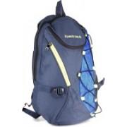 Fastrack Laptop Backpack(Blue, Black)