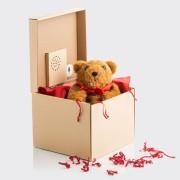 Кутия за Подарък с Рекордер