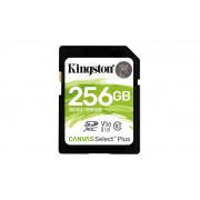 Kingston Canvas Select Plus - Flash-minneskort - 256 GB - Video