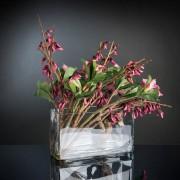 Aranjament floral ADENIUM