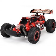 SHY 1/16 Scale 2WD Rechargeable RC Car Remote Control High Speed Radio Controlled Off-road Buggy RC Racing Military Truck Toy (Red)
