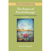 The Basics of Psychotherapy: An Introduction to Theory and Practice, Paperback/Bruce E. Wampold