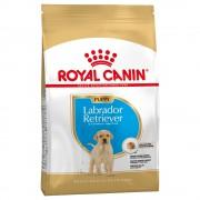 3kg Labrador Retriever Puppy Royal Canin pienso para perros
