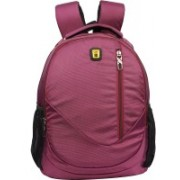Blowzy 17 inch Expandable Laptop Backpack(Maroon)