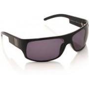 Sisley Round Sunglasses(Violet)