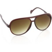 Joe Black Aviator Sunglasses(Brown)
