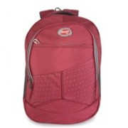 Classic Polyester School Bag |Shoulder Backpacks | Casual Bag for Girls & Boys 25 L Backpack(Maroon)
