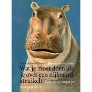Wat je moet doen als je over een nijlpaard struikelt - Edward van de Vendel