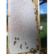 Miere de albine 100% naturala