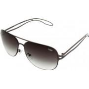 Tommy fashion Rectangular Sunglasses(Brown)