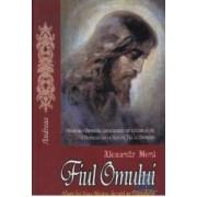 Fiul omului. Viata lui Iisus Hristos bazata pe Evanghelie - Alexandr Meni
