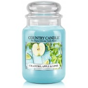 Country Candle Cilantro, Apple & Lime 2 Wick Large Jar Cilantro Apple & Lime 652 g