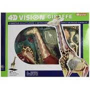 Famemaster 4D Vision Giraffe Anatomy Model