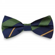 TND Basics Groene & Gouden Gestreepte Marineblauwe Zijden Vlinderdas