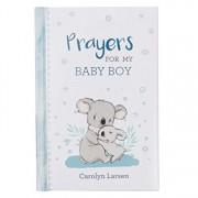 Gift Book Prayers for My Baby Boy, Hardcover/Carolyn Larsen