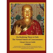 On Realizing There is Only the Virtual Nature of Consciousness, Paperback/Peter Lunde Johnson