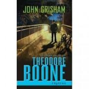 Theodore Boone. Rapirea