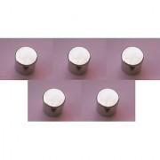 Neodymium Magnets Grade N52 10mm x 10mm Set of 5