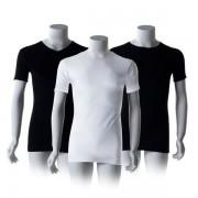 Cavello T-Shirts 4-pack-L-Ronde hals Zwart