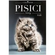 Calendar de perete - Pisici 2019 - A4