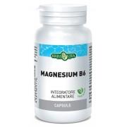 Erba Vita Magnesium B6 60cps