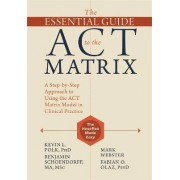 The Essential Guide to the ACT Matrix by Kevin L. Polk