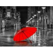 Gaira Malování podle čísel Červený deštník M991463