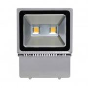 Proiector cu LED 100W, ECO LED, carcasa metalica, gri