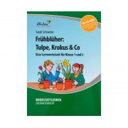 Lernbiene Lernwerkstatt: Frühblüher: Tulpen, Krokus & Co