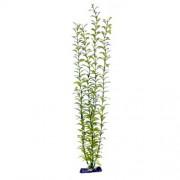 PENN PLAX Rastlina umelá 56 cm Blooming Ludwigia (Green) Giant