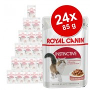 Gemengd pakket: 24 x 85 g Royal Canin in Saus en Gelei - Intense Beauty (12 x 85 g in Saus + 12 x 85 g in Gelei)